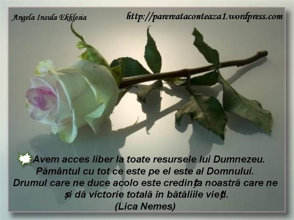 citate celebre despre batranete Meditatia zilei(25.05.2012)HAR ŞI LA BĂTRÂNEŢE! | Insula Ekklesia citate celebre despre batranete