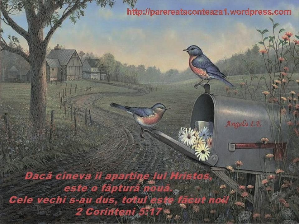 _by Insula Ekklesia