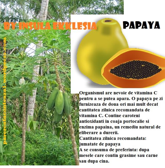 papaya-65983_640