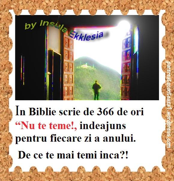 312411_395248893898635_537542380_n - Kopie