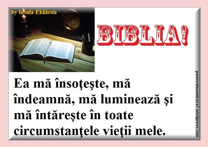 biblia-3