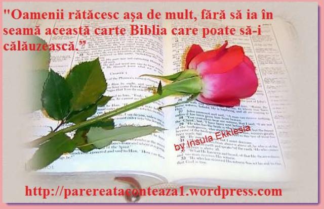 biblia trandafir